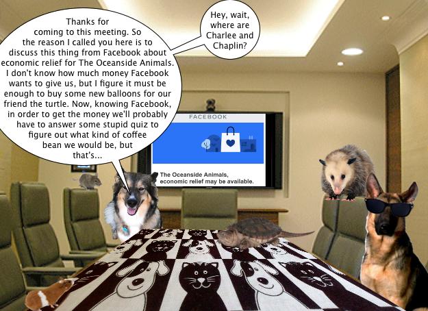 facebook_meeting_1